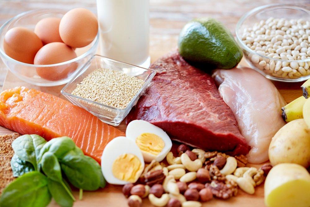 protéines accélèrent le métabolisme